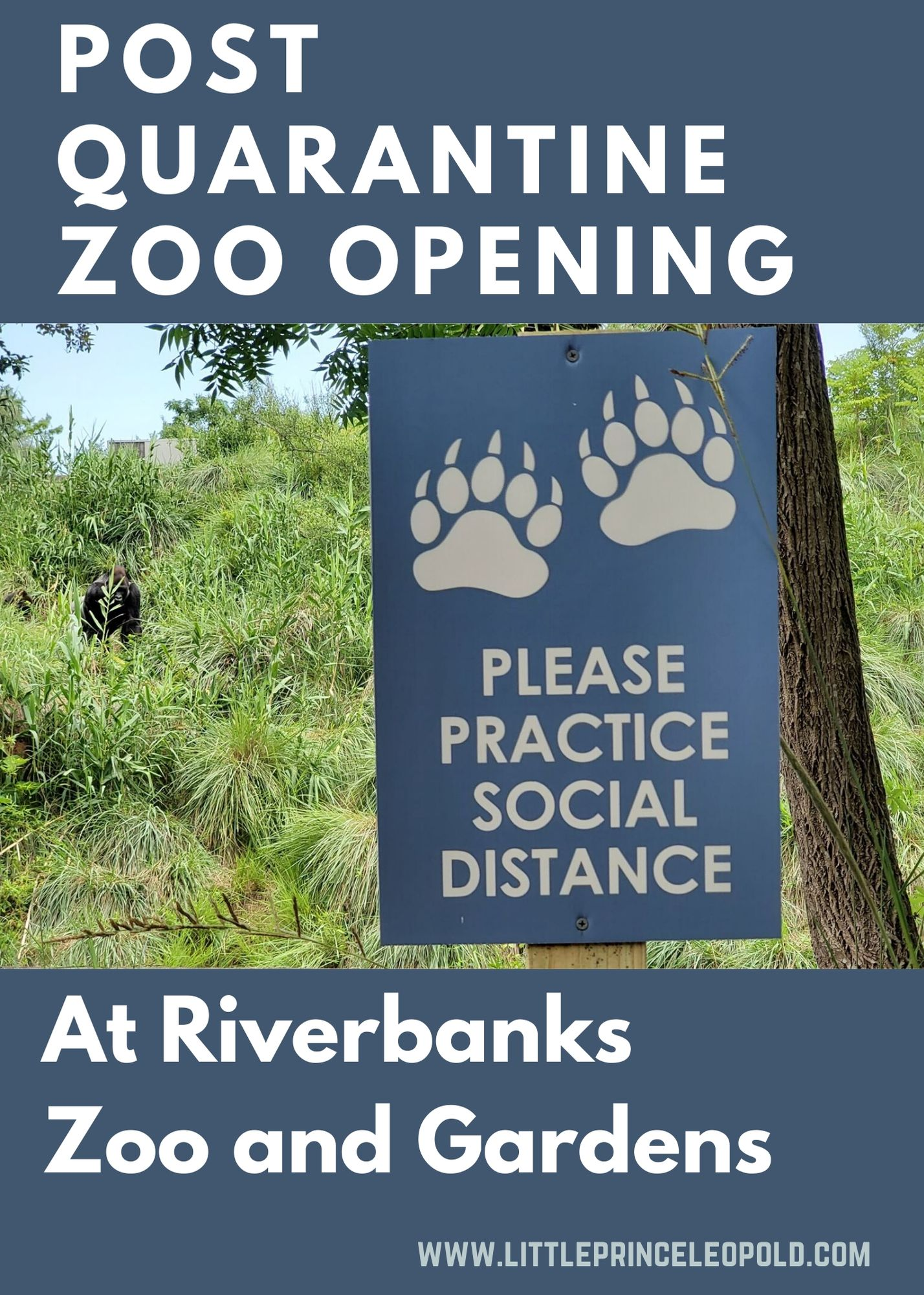 Riverbanks-Zoo-Opening